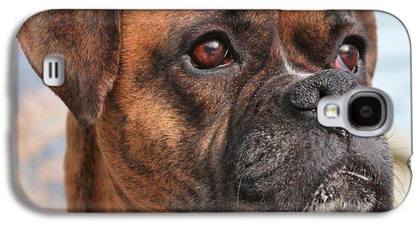 Boxer Portrait Galaxy S4 Case