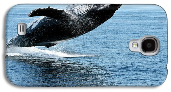 Breaching Humpback Whales Happy-2 Galaxy S4 Case