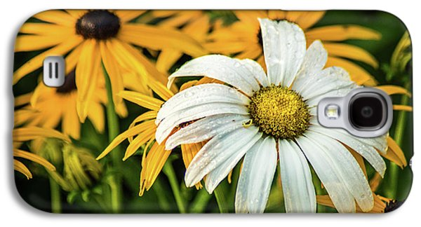 Galaxy S4 Case featuring the photograph Bride And Bridesmaids by Bill Pevlor