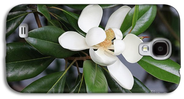 Bright Magnolia With Leaves Galaxy S4 Case by Carol Groenen