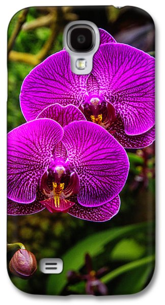 Bright Purple Orchids Galaxy S4 Case by Garry Gay