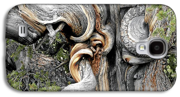 Bristlecone Pine - 'i Am Not Part Of History - History Is Part Of Me' Galaxy S4 Case