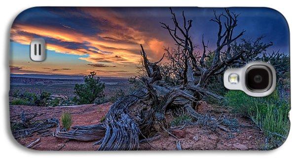 Bristlecone Sunset Galaxy S4 Case by Rick Berk