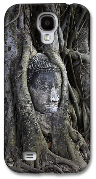 Buddha Head In Tree Galaxy S4 Case by Adrian Evans