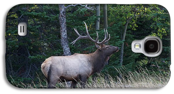Galaxy S4 Case featuring the photograph Bull Elk 2 by Aaron Spong
