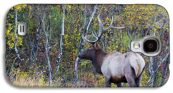 Galaxy S4 Case featuring the photograph Bull Elk by Aaron Spong