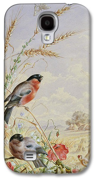 Bullfinches In A Harvest Field Galaxy S4 Case