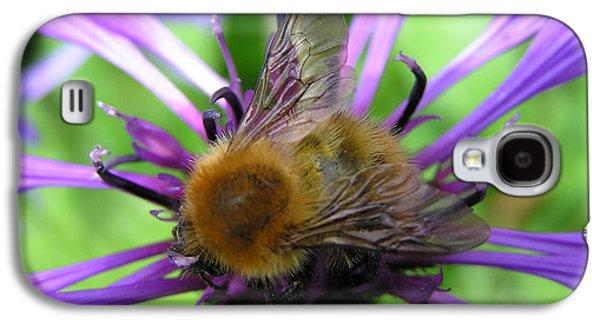 Bumblebee In Blue Galaxy S4 Case