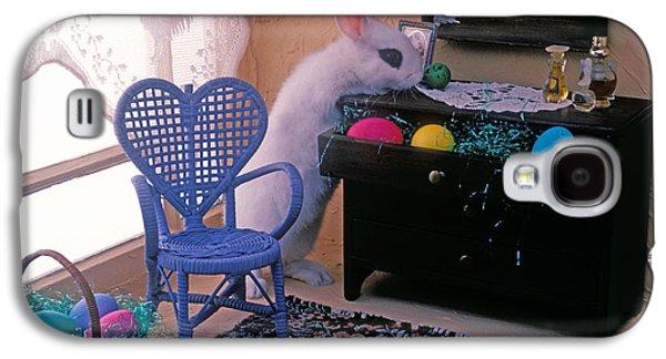 Bunny In Small Room Galaxy S4 Case