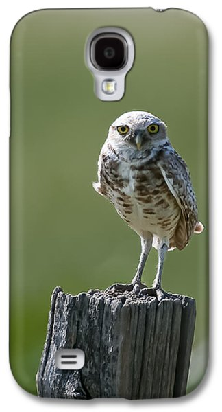 Galaxy S4 Case featuring the photograph Burrowing Owl by Gary Lengyel