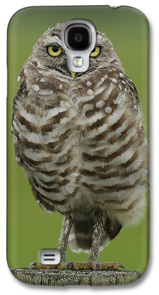 Burrowing Owl Lookout Galaxy S4 Case