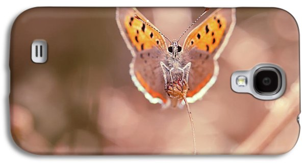 Butterfly Beauty Galaxy S4 Case