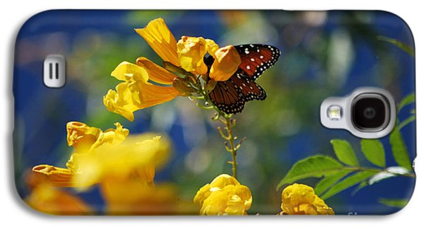 Bloosom Galaxy S4 Cases - Butterfly Pollinating Flowers  Galaxy S4 Case by Donna Van Vlack