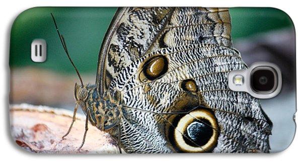Butterfly Galaxy S4 Case