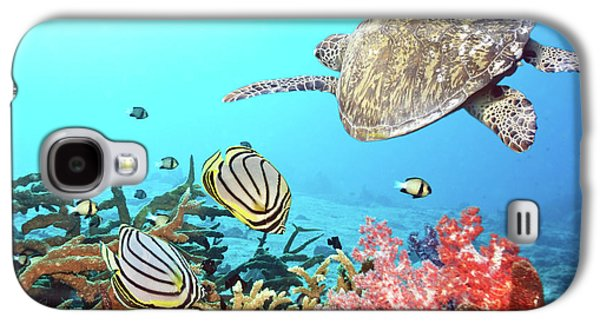 Butterflyfishes And Turtle Galaxy S4 Case by MotHaiBaPhoto Prints