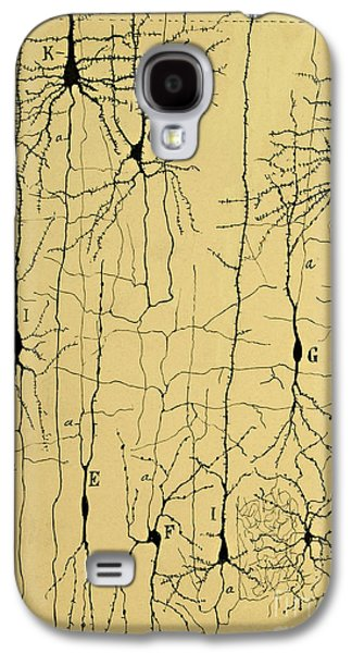 Cajal Drawing Of Microscopic Structure Of The Brain 1904 Galaxy S4 Case by Science Source