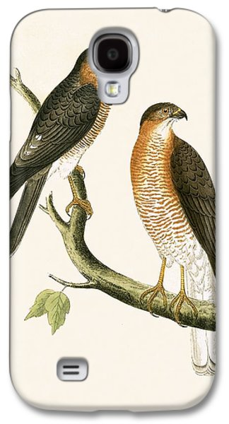 Calcutta Sparrow Hawk Galaxy S4 Case by English School