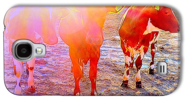 The Calfs Also Have Dreams For Their Lives But They Never Turn Out To Be True  Galaxy S4 Case by Hilde Widerberg