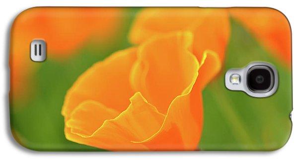 California Spring Poppy Macro Close Up Galaxy S4 Case
