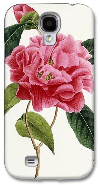 Camellia Reticulata Galaxy S4 Case by French School