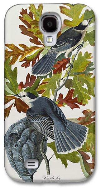 Canada Jay Galaxy S4 Case by John James Audubon