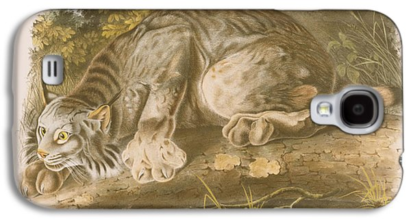 Canada Lynx Galaxy S4 Case by John James Audubon