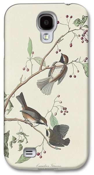 Titmouse Galaxy S4 Case - Canadian Titmouse by Dreyer Wildlife Print Collections