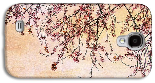 Cherry Blossoms Photographs Galaxy S4 Cases - Canopy Galaxy S4 Case by Rebecca Cozart