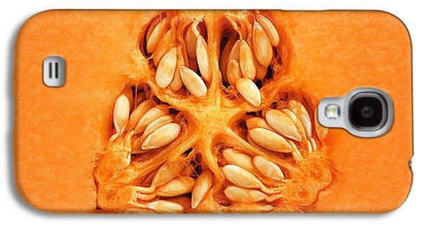 Cantaloupe Melon Inside Galaxy S4 Case by Johan Swanepoel