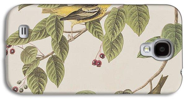 Carbonated Warbler Galaxy S4 Case by John James Audubon