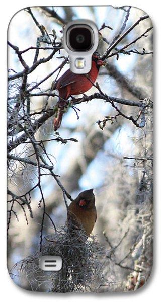 Lovebird Galaxy S4 Case - Cardinals In Mossy Tree by Carol Groenen
