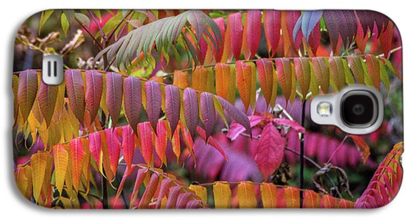 Galaxy S4 Case featuring the photograph Carnival Of Autumn Color by Bill Pevlor