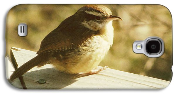 Wren Galaxy S4 Case - Carolina Wren by Amy Tyler