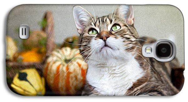 Pumpkin Galaxy S4 Case - Cat And Pumpkins by Nailia Schwarz