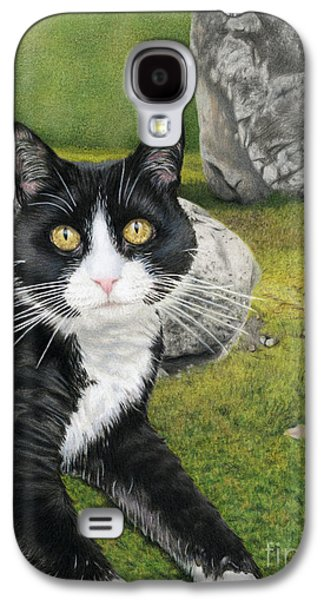Cat In A Rock Garden Galaxy S4 Case