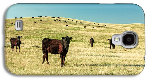 Cattle Grazing On The Plains Galaxy S4 Case by Todd Klassy