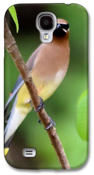 Cedar Wax Wing 2 Galaxy S4 Case by Sheri McLeroy