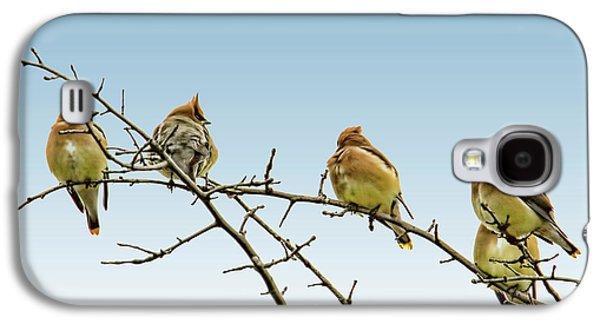 Cedar Waxwings Galaxy S4 Case