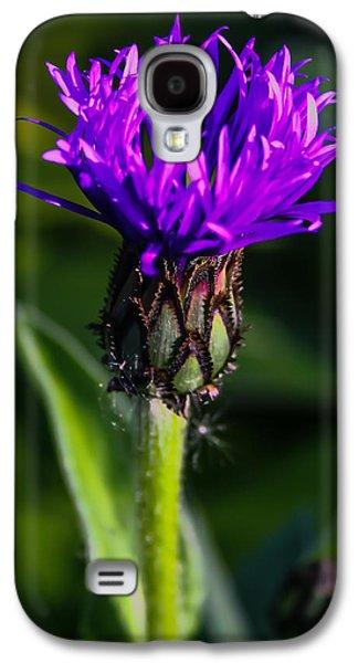 Centaurea Montana 2 Galaxy S4 Case by Mo Barton