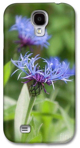 Centaurea Montana, Great Blue-bottle  Galaxy S4 Case by Andrew Howard