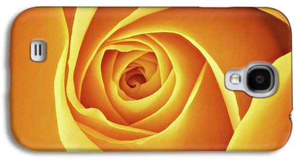 Center Of A Yellow Rose Galaxy S4 Case by Jim Hughes