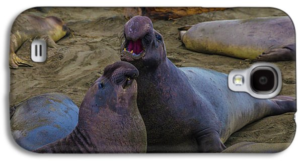 Challenging Elephant Seals Galaxy S4 Case
