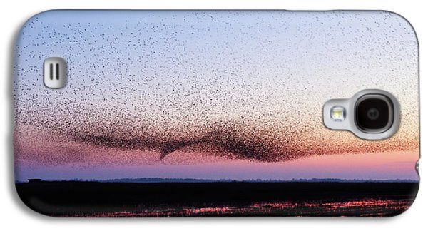 Chaos In Motion - Bird Of Many Birds Galaxy S4 Case