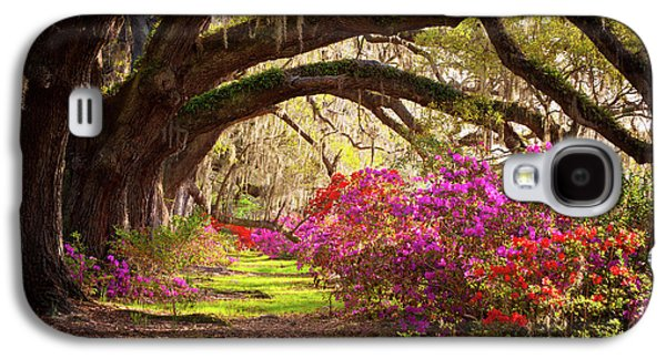 Charleston Sc Magnolia Plantation Gardens - Memory Lane Galaxy S4 Case