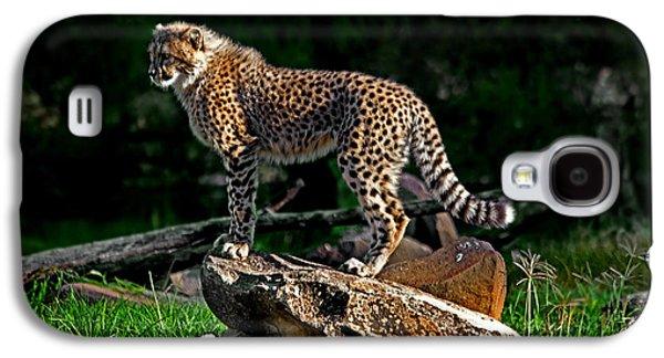 Cheetah Cub Finds Her Pride Rock Galaxy S4 Case by Miroslava Jurcik