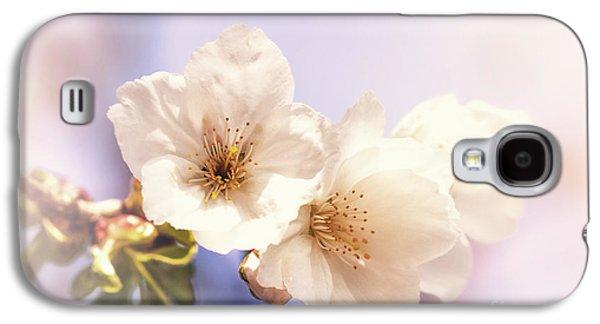 Cherry Blossom Galaxy S4 Case by Jane Rix