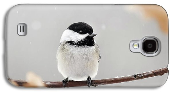 Galaxy S4 Case featuring the photograph Chickadee Bird In Snow by Christina Rollo