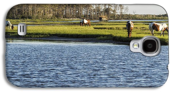 Chincoteague Ponies On Assateague Island Galaxy S4 Case