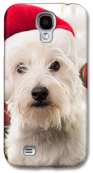 Christmas Elf Dog Galaxy S4 Case by Edward Fielding