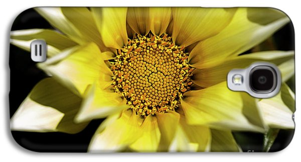 Galaxy S4 Case featuring the photograph Chrysanthos by Linda Lees